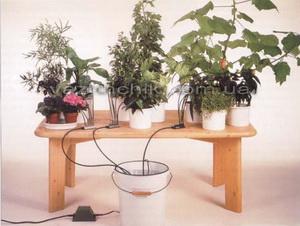 Полив домашних растений во время отпуска своими руками фото 923