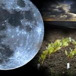 лунный календарь150